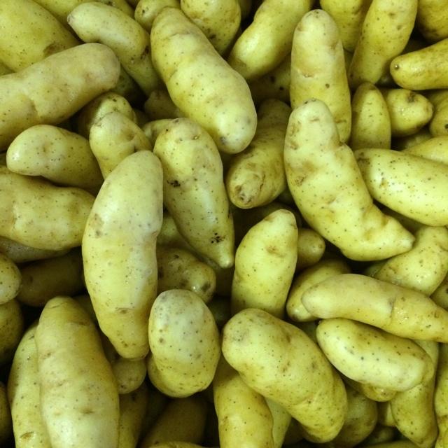 Braised Fingerling Potato Coins Recipes — Dishmaps