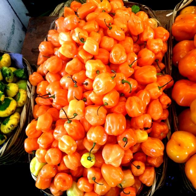 Image Gallery habanero orange
