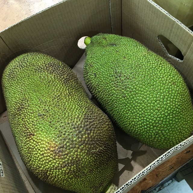 thuan phat supermarket near san diego ca united states about 723 days ago 82216 spotters comments jack fruit spotted at thuan phat supermarket