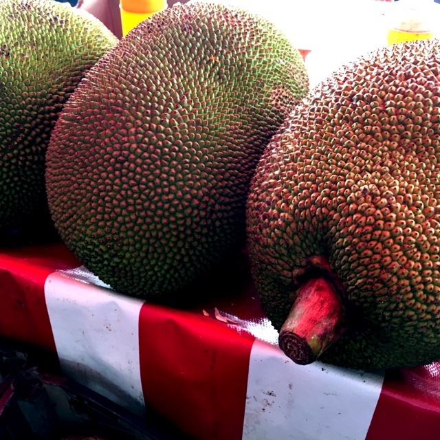 mercado hidalgo near tijuana baja california mexico about 656 days ago 102816 spotters comments jack fruit spotted at mercado hidalgo