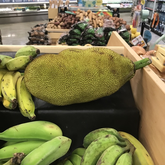 about 523 days ago 31017 spotters comments jack fruit spotted at whole foods market jack fruit are in season on maui found one at