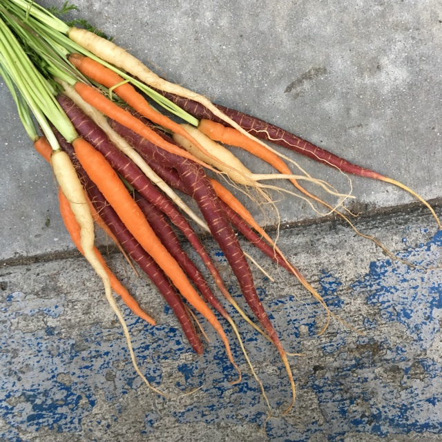 Baby Bunched Carrots Information, Recipes and Facts