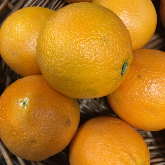 Salad recipes with navel oranges size