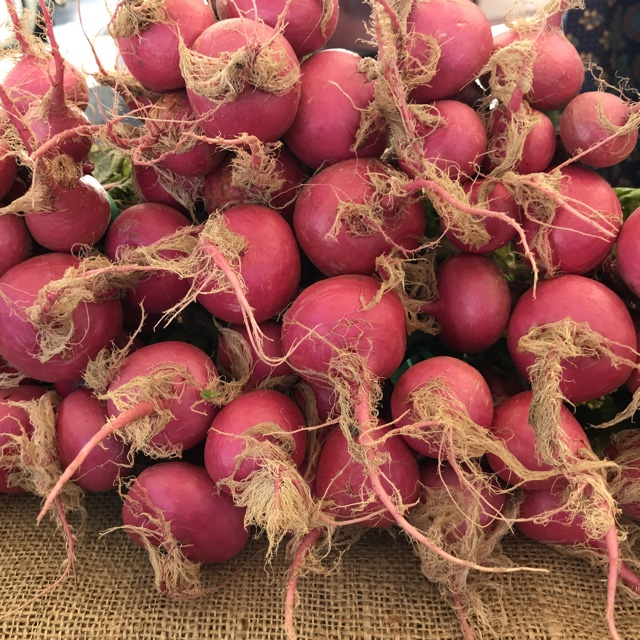 Baby Pink Turnips Information, Recipes and Facts