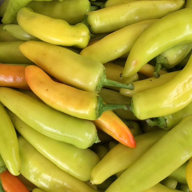 Hungarian Hot Chile Peppers Information Recipes And Facts