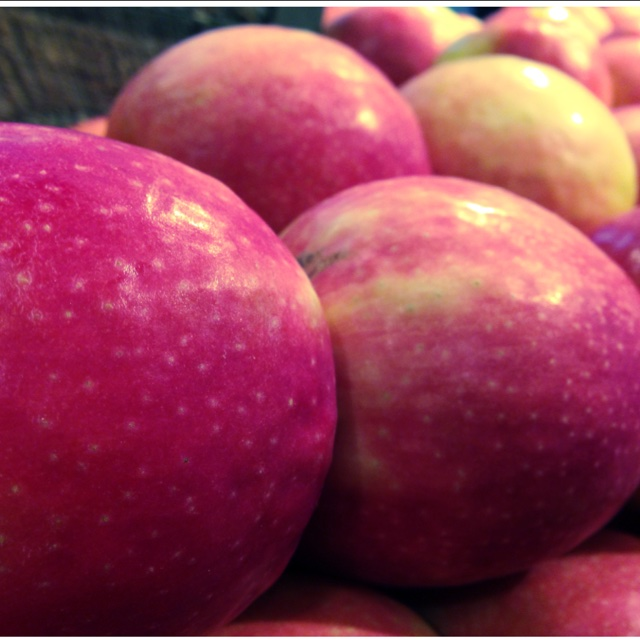 Pink Lady 174 Apples Information Recipes And Facts