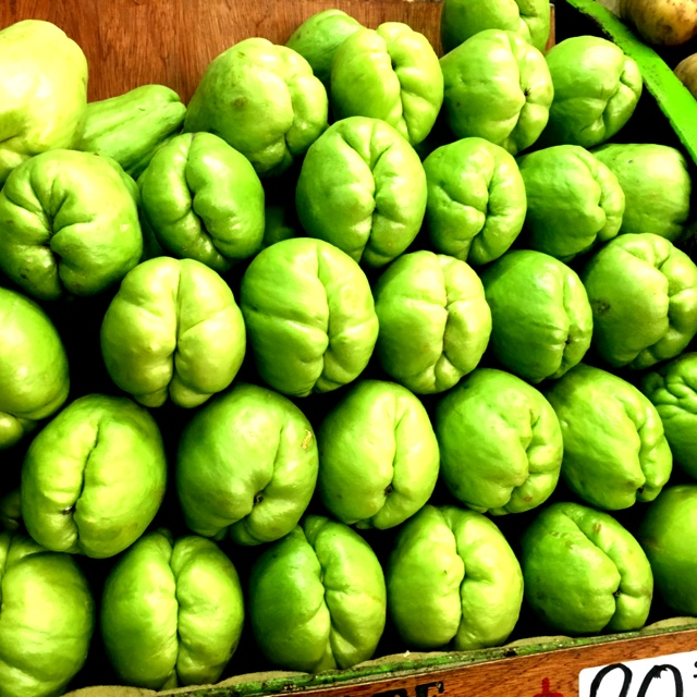 chayote squash information recipes and facts