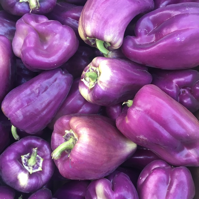 67c31801a316 Sharer s comments   Tequila Peppers spotted at Santa Monica Farmers Market.  Share Pic 38599