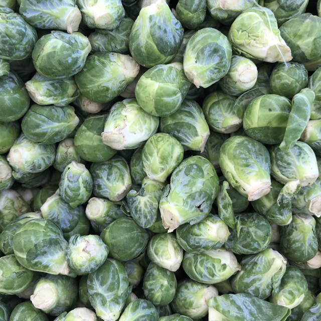 Brussels Sprouts Information, Recipes and Facts