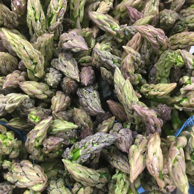 Green Asparagus Information, Recipes and Facts