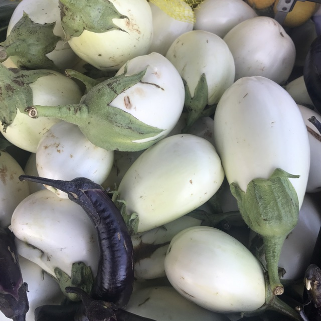 5 Seeds  **Buy One Get One Free** Aubergine Ivory