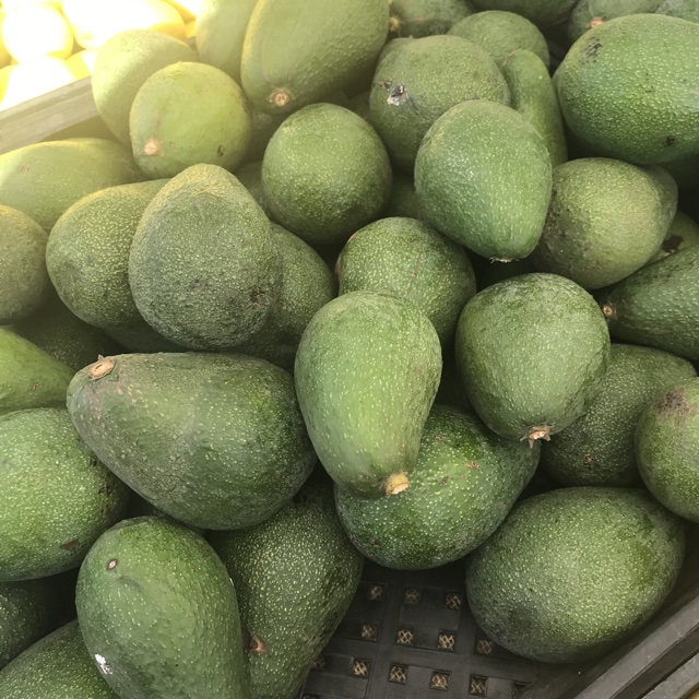 Fuerte Avocados Information, Recipes and Facts