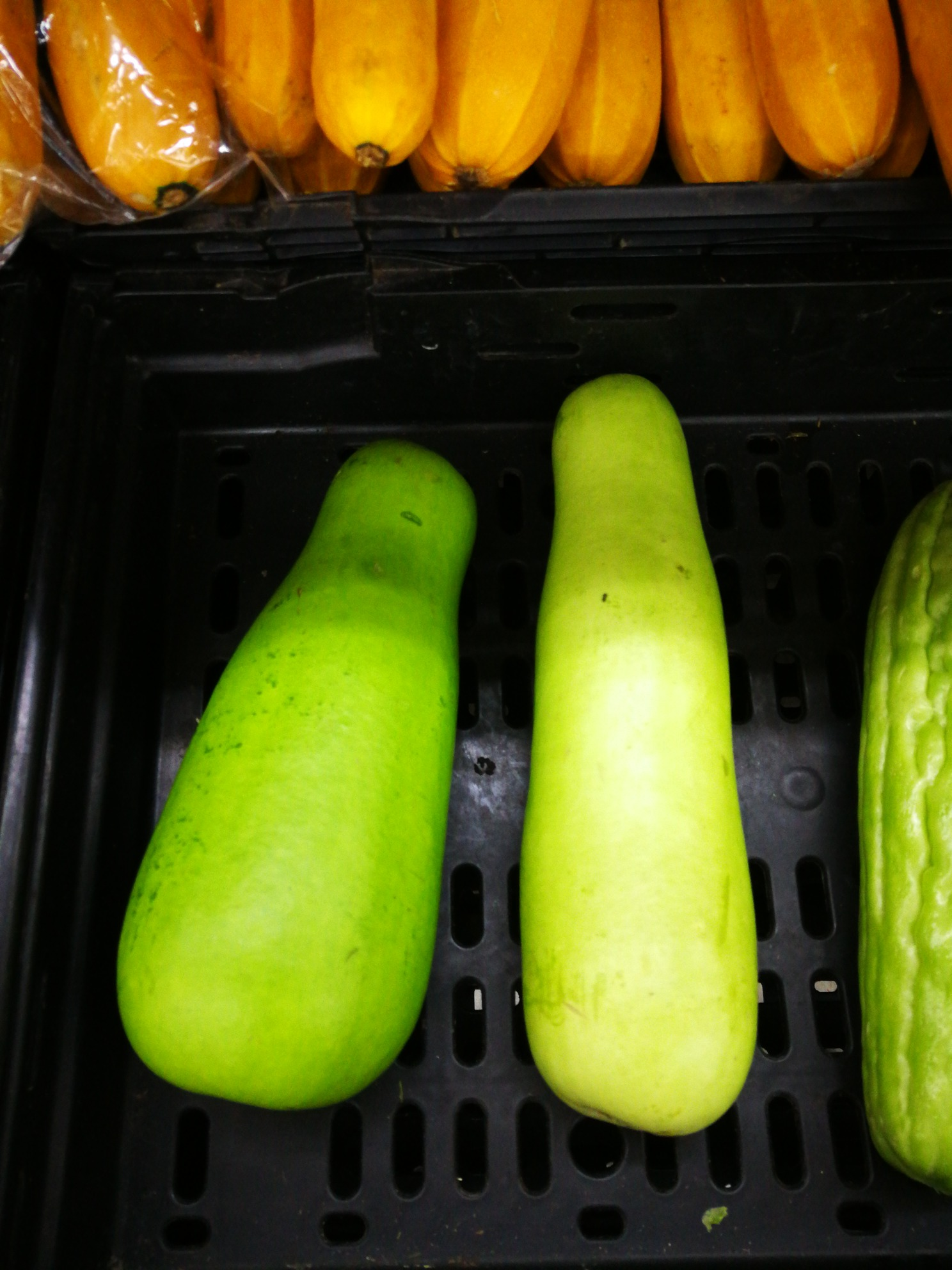 Bottle Gourd Information Recipes And Facts