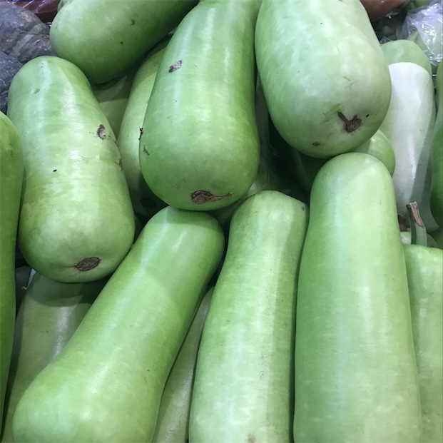 Opo Squash Information Recipes And Facts