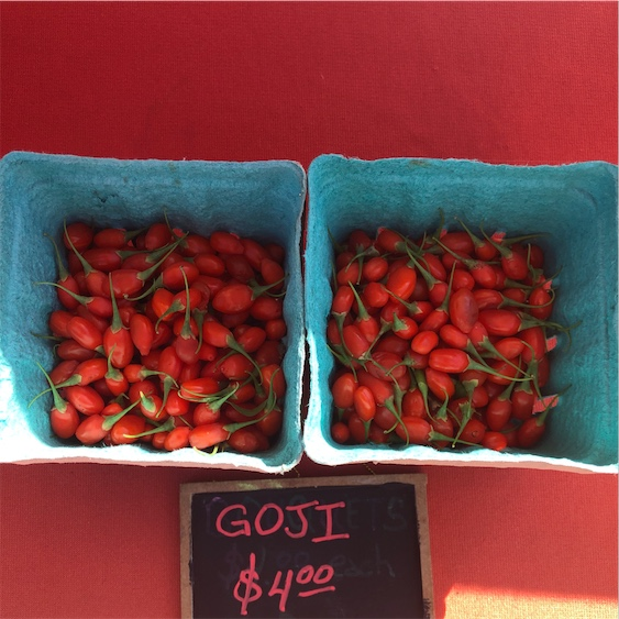 Goji Berries Information And Facts