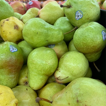 Bartlett Pears Information Recipes And Facts